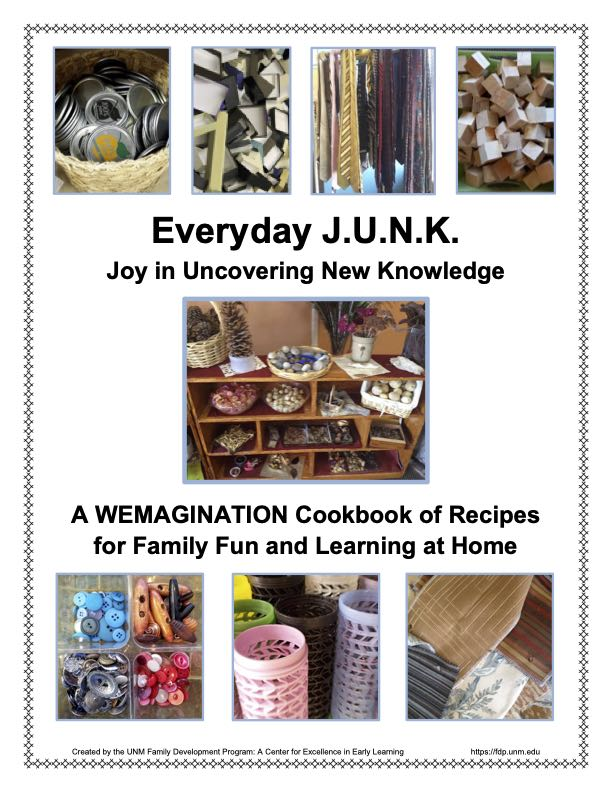 Everyday JUNK Recipes Cover